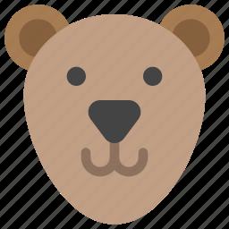 animals, bear, face, nature, teddy icon