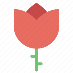 flower, gardening, green, leaves, nature, plant, rose icon