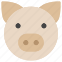 animals, face, farm, nature, pig, piggy, pork icon