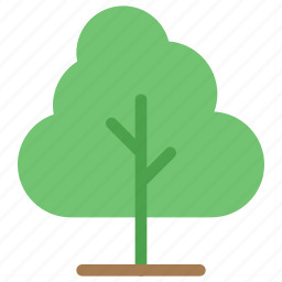 ecology, flora, forest, green, nature, plant, tree icon
