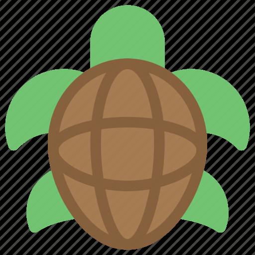 Animals, nature, sea, slow, turtle icon