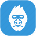 animal, blue, form, gorilla, head, monkey, rounded icon
