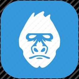 animal, blue, form, gorilla, head, monkey, rounded icon