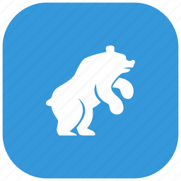 angry, animal, bear, nature, zoo icon