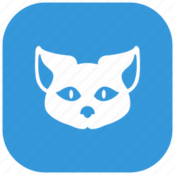 animal, cat, head, kitty, nature, pet icon