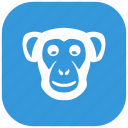 animal, head, monkey, zoo icon