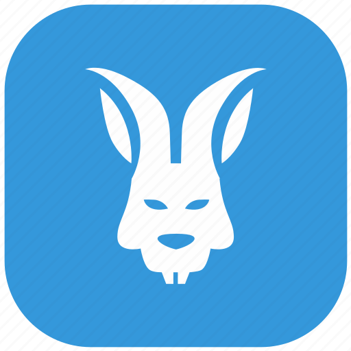 angry, blue, form, head, rabbit, rounded icon