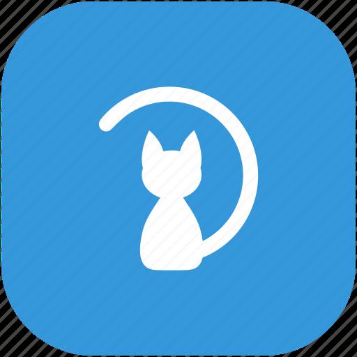 animal, cat, kitty icon