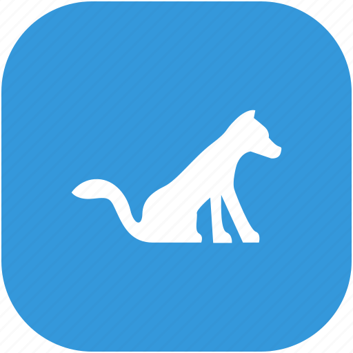 animal, cat, friend, home, pet icon