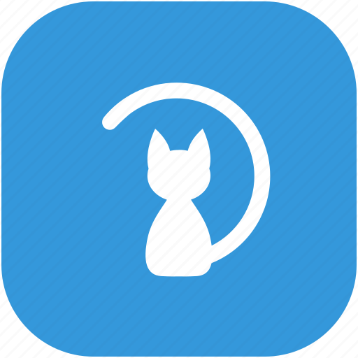 animal, body, cat, seat, skin icon