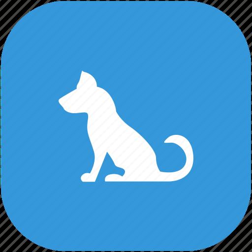 animal, dog, pet, seat icon