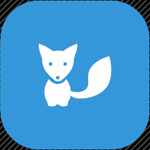 animal, fox, wild icon