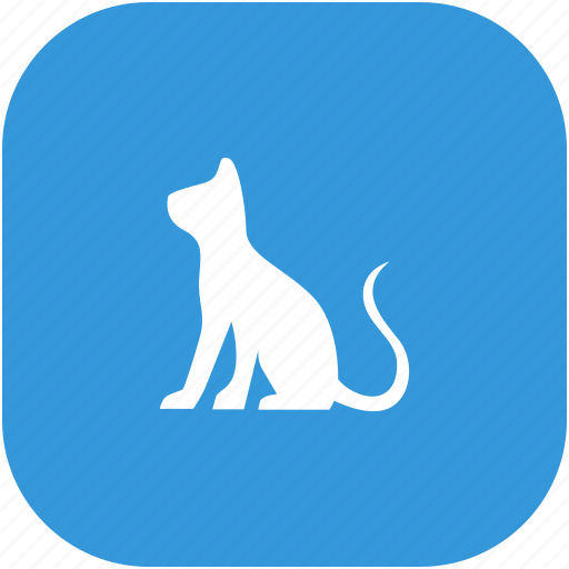 animal, cat, hungry, kitty, pet icon