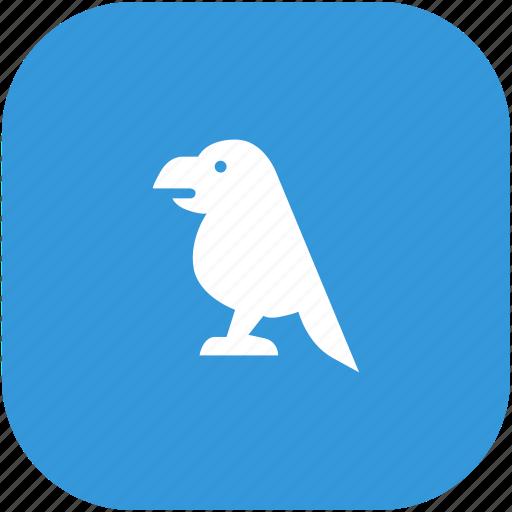 animal, bird, carrot, zoo icon