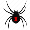 arachnid, arachnophobia, black, deadly, poisonous, spider, widow icon