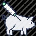 pig, vaccine, syringe, animal, injection, veterinary