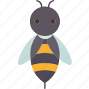 bee, insect, sting, invertebrate, animal