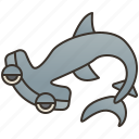 dangerous, hammerhead, ocean, predator, shark