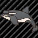 killer, mammal, ocean, orca, whale icon