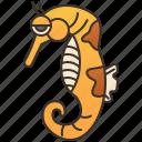 fish, hippocampus, aquarium, marine, seahorse