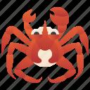 alaskan, crab, crustacean, king, seafood icon