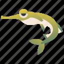 fauna, freshwater, paddlefish, polyodon, river
