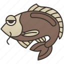 crap, fish, food, freshwater, ingredient icon