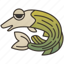 fish, fishing, freshwater, pike, wildlife icon