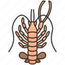 claw, deep, lobster, sea, terrible icon