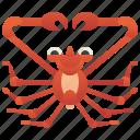 crab, crustacean, giant, marine, spider