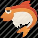 bream, fish, fresh, recipe, seafood