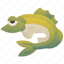 fish, fishing, food, freshwater, zander icon