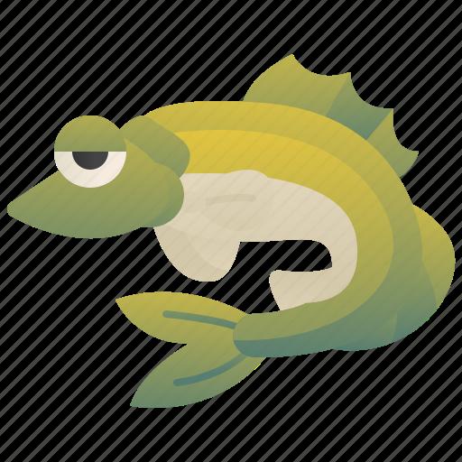 Fish, fishing, food, freshwater, zander icon - Download on Iconfinder