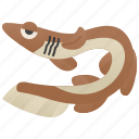 fauna, frilled, ocean, predator, shark