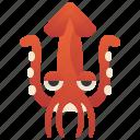 fresh, marine, octopus, seafood, squid