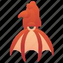 animal, cephalopod, marine, squid, vampire