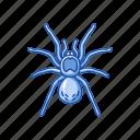 animal, arachnid, bird-eating spider, invertebrate, spider, tarantula icon