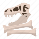 dinosaur, bones, head, artifacts, archeology, fossil, paleontology icon