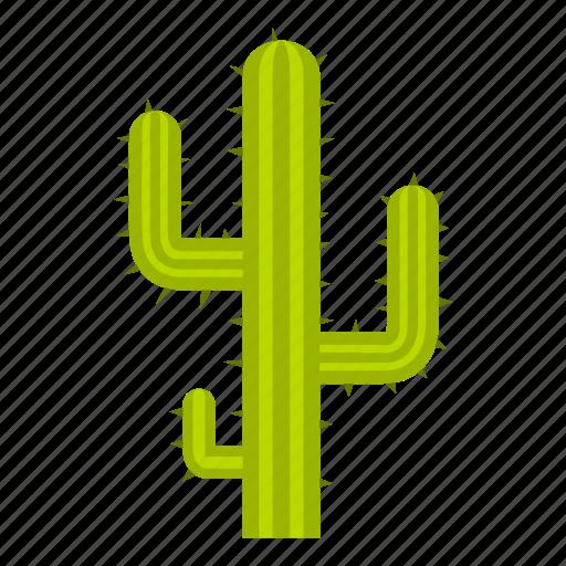 america, argentina, cactus, dry, landscape, plant, tourism icon