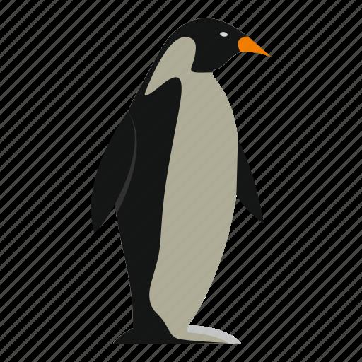 animal, argentina, bird, island, nature, penguin, wildlife icon
