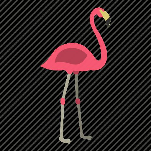 animal, beak, bird, feather, flamingo, pink, tropical icon