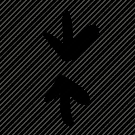 arrow, arrows, collision, direction, inconsistency, location, navigation icon