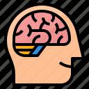 brain, human, intelligence, smart icon