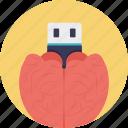 brain flash drive, brain shaped usb, brain usb, memory stick icon