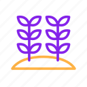 agriculture, farm, farming, garden, nature, plant, wheat icon
