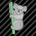 animal, australia, australian, koala icon