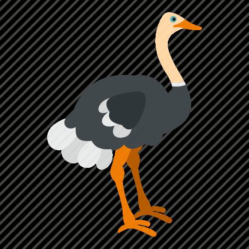 animal, beak, bird, emu, feather, nature, ostrich icon