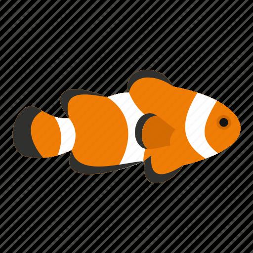animal, aquarium, aquatic, beautiful, cute, exotic, fish clown icon