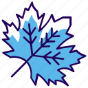 autumn leaf, ecology, foliage, maple leaf, natural leaf icon