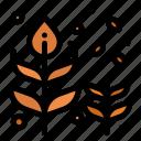 autumn, blow, fall, leaf, tree